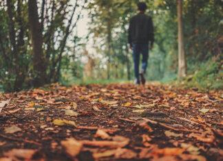 Jesień i jej uroki